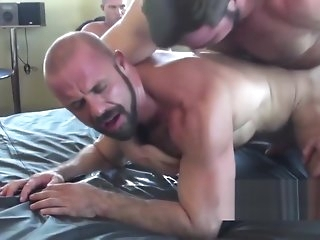 gay Pigs Coupled with Someone's skin Wolf bareback